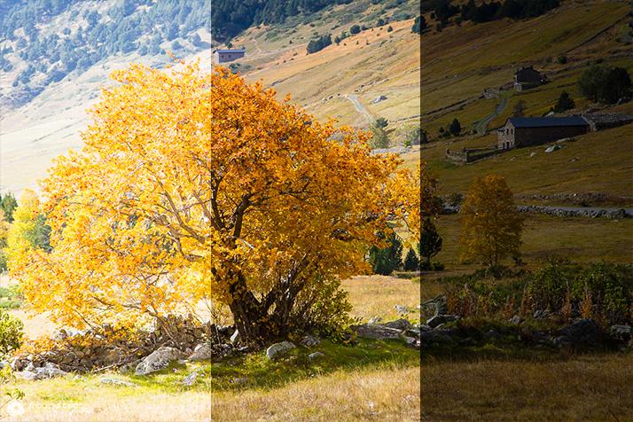 A gauche, photo sur-exposée. Au centre, exposition normale. A droite, photo sous-exposée.